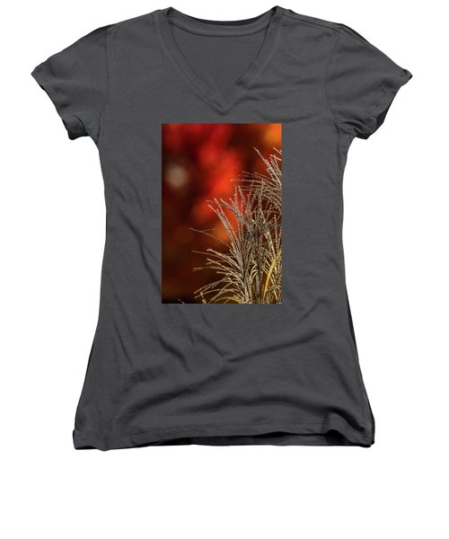 Autumn Fire - 2 Women's V-Neck