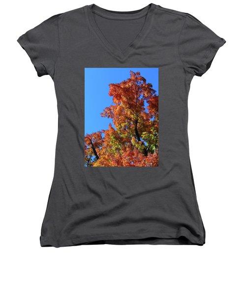 Autumn Foliage Women's V-Neck (Athletic Fit)