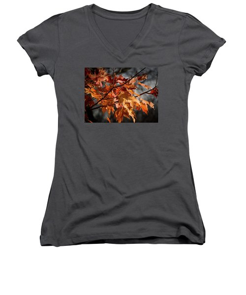 Autumn Gray Women's V-Neck T-Shirt (Junior Cut) by Kimberly Mackowski