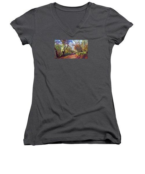 Autumn In Ashridge Women's V-Neck T-Shirt (Junior Cut) by Anne Kotan