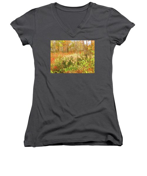 Autumn Landscape Women's V-Neck (Athletic Fit)