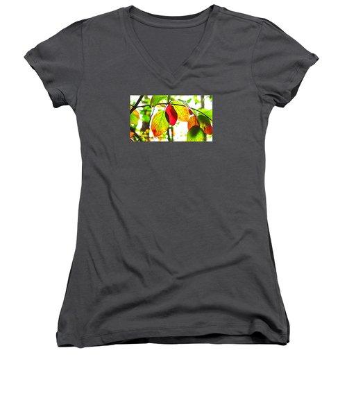 Autumn Leaves At Lake Padden Women's V-Neck T-Shirt (Junior Cut) by Karen Molenaar Terrell