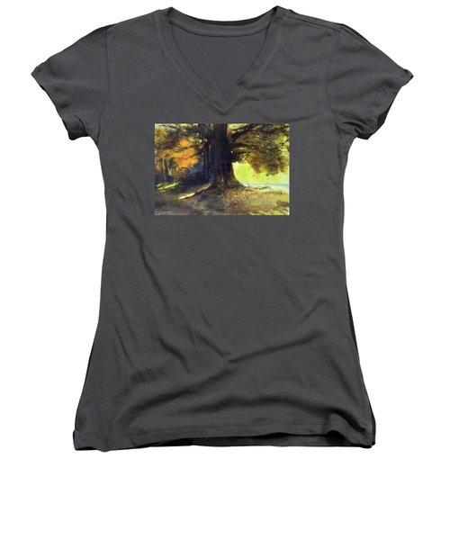 S'il Vou Plait Women's V-Neck T-Shirt (Junior Cut) by Ed Heaton