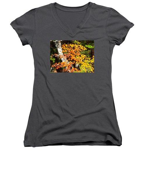 Autumn Maple Women's V-Neck