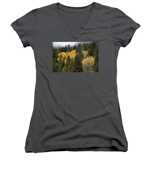 Autumn Mist, Owyhee Mountains Women's V-Neck (Athletic Fit)