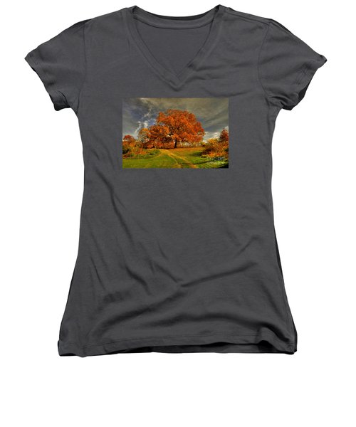 Autumn Picnic On The Hill Women's V-Neck (Athletic Fit)