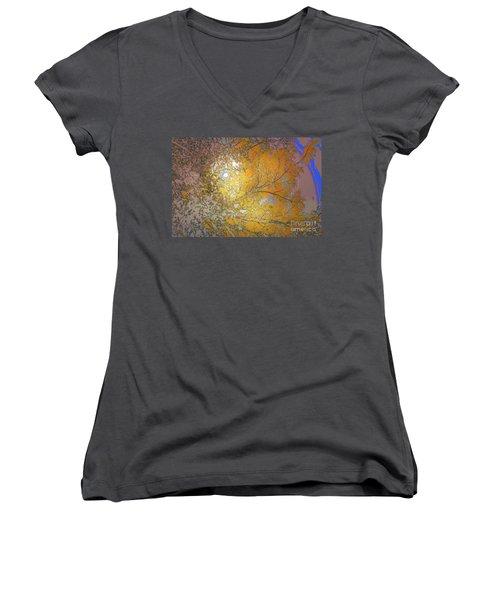 Autumn Sun Women's V-Neck T-Shirt (Junior Cut) by Deborah Nakano