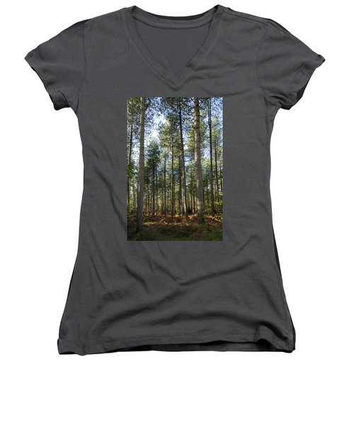 Autumn Tranquil Forest Women's V-Neck T-Shirt