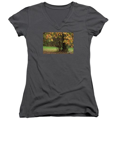 Autumn Tree 2 Women's V-Neck T-Shirt (Junior Cut) by Rudi Prott