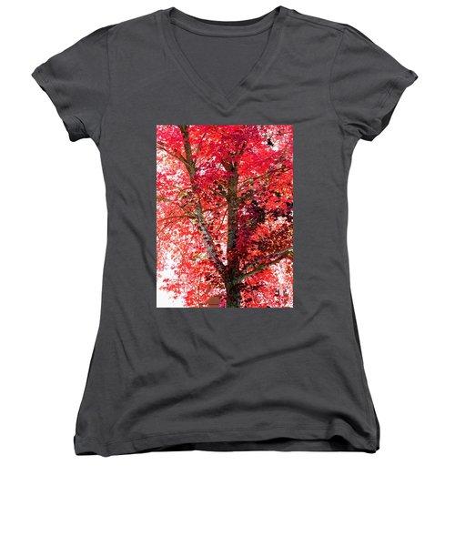 Women's V-Neck T-Shirt (Junior Cut) featuring the photograph Autumn Tree by Michael Dohnalek