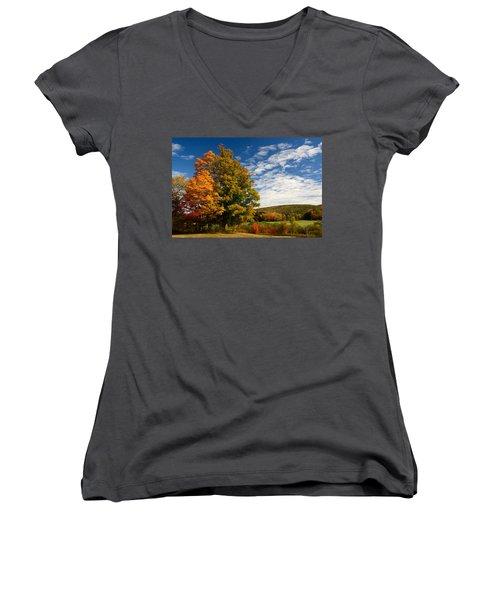 Autumn Tree On The Windham Path Women's V-Neck