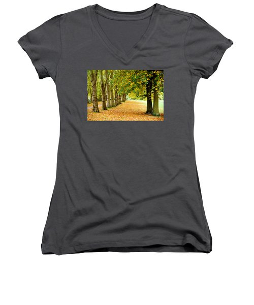 Autumn Walk Women's V-Neck T-Shirt (Junior Cut) by Colin Rayner