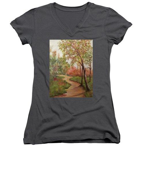 Autumn Walk Women's V-Neck T-Shirt (Junior Cut) by Roseann Gilmore