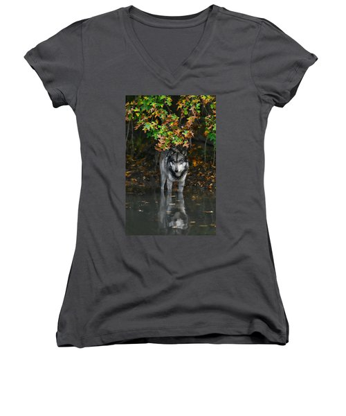 Autumn Wolf Women's V-Neck T-Shirt (Junior Cut) by Shari Jardina