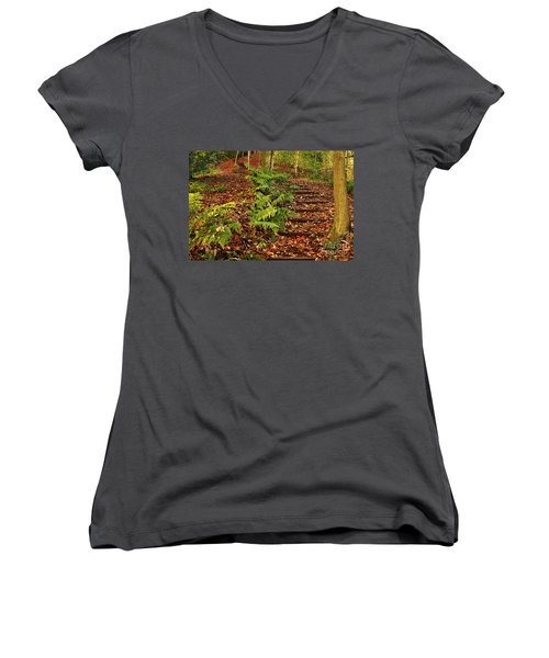 Autumn Woodland Path Women's V-Neck