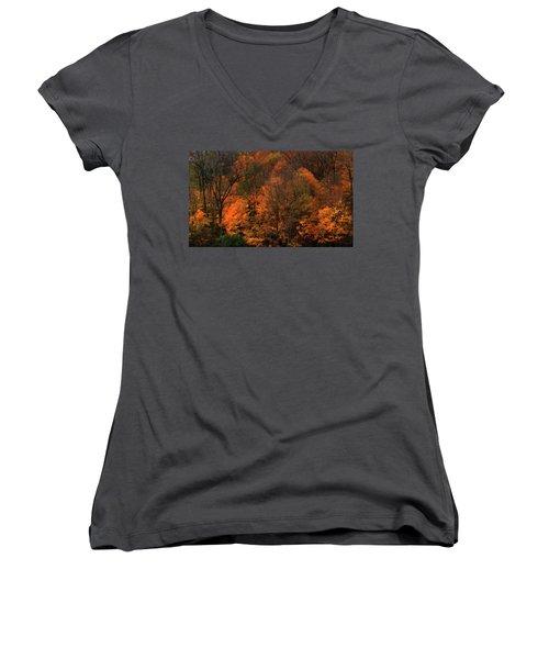 Autumn Woods Women's V-Neck (Athletic Fit)