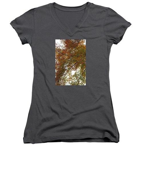 Autumn's Abstract Women's V-Neck T-Shirt (Junior Cut) by Deborah  Crew-Johnson