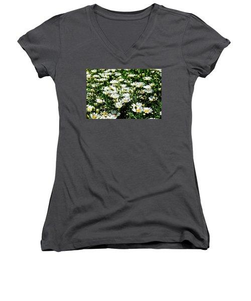 Women's V-Neck T-Shirt featuring the photograph Avalanche Sun Daises by Monte Stevens
