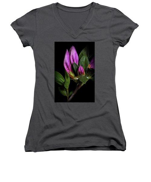 Women's V-Neck T-Shirt (Junior Cut) featuring the photograph Azalea Buds by Richard Rizzo