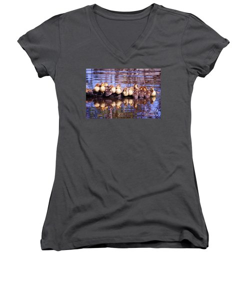Baby Ducks On A Log Women's V-Neck T-Shirt (Junior Cut) by Stephanie Hayes