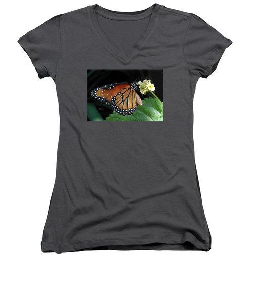 Baby Monarch Macro Women's V-Neck T-Shirt (Junior Cut) by Felipe Adan Lerma