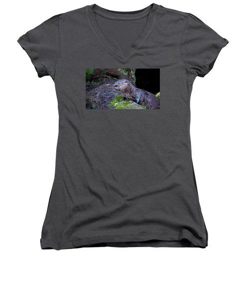 Baby Otter Women's V-Neck T-Shirt (Junior Cut) by Kelly Marquardt