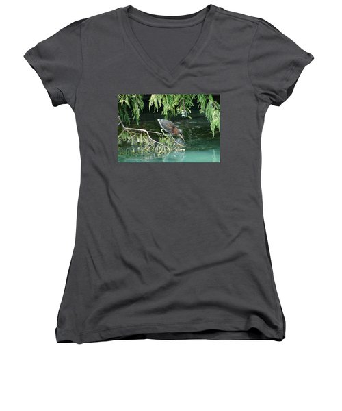 Baby Out On A Limb Women's V-Neck T-Shirt