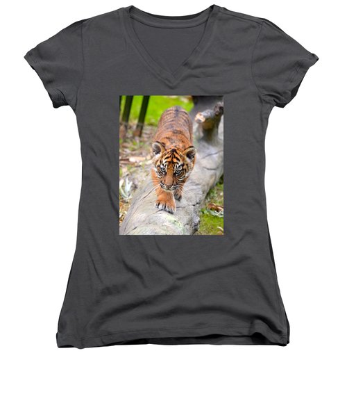 Baby Sumatran Tiger Cub Women's V-Neck T-Shirt