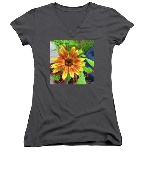 Baby Sunflower Grace Women's V-Neck