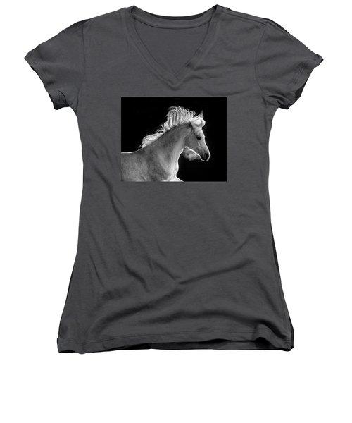 Backlit Arabian Women's V-Neck T-Shirt (Junior Cut) by Wes and Dotty Weber