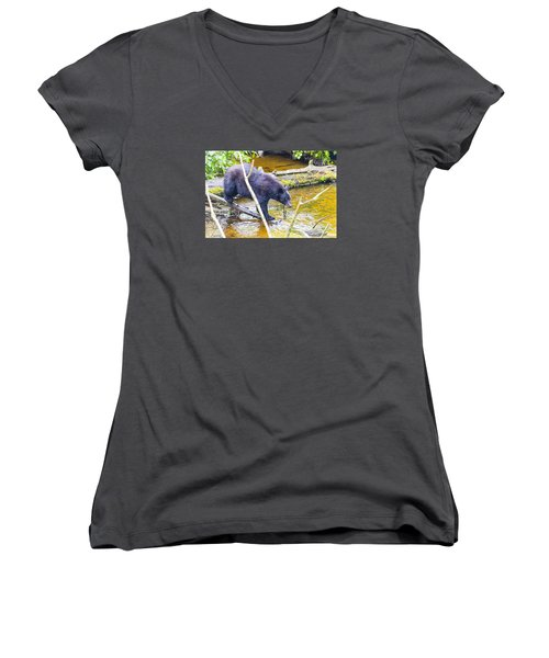 Balancing Act Women's V-Neck T-Shirt (Junior Cut) by Harold Piskiel