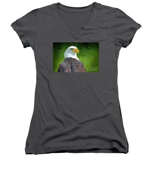 Bald Eagle Women's V-Neck T-Shirt (Junior Cut) by Franziskus Pfleghart