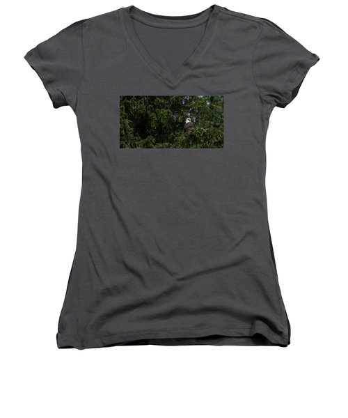 Bald Eagle In The Tree Women's V-Neck T-Shirt (Junior Cut) by Timothy Latta