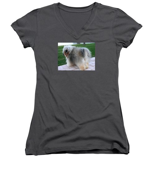 Women's V-Neck T-Shirt (Junior Cut) featuring the photograph ball of fur Havanese dog by Sally Weigand