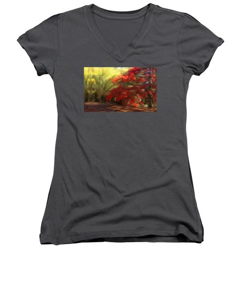 Bamboo And The Flamboyant Women's V-Neck (Athletic Fit)