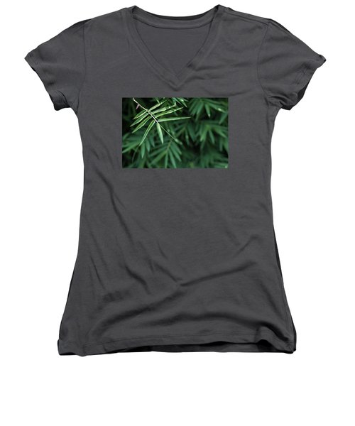 Bamboo Leaves Background Women's V-Neck T-Shirt (Junior Cut) by Jingjits Photography