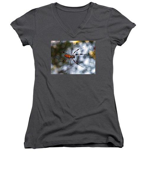 Banana Spider   3 Women's V-Neck T-Shirt