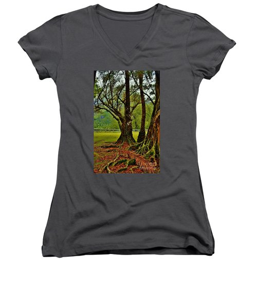 Banyan Tree And Date Palm Women's V-Neck (Athletic Fit)