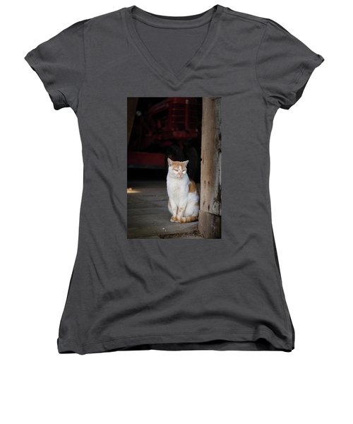 Barn Cat And Tractor Women's V-Neck