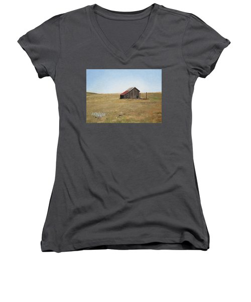 Barn Women's V-Neck T-Shirt (Junior Cut) by Joshua Martin