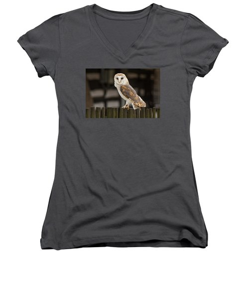 Barn Owl Women's V-Neck (Athletic Fit)