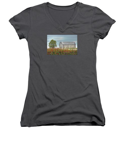 Barn With Charm Women's V-Neck T-Shirt