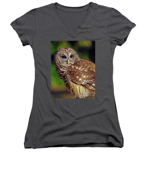 Barred Owl Women's V-Neck T-Shirt (Junior Cut) by Larry Nieland