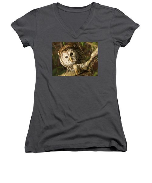 Barred Owl Peering Women's V-Neck (Athletic Fit)