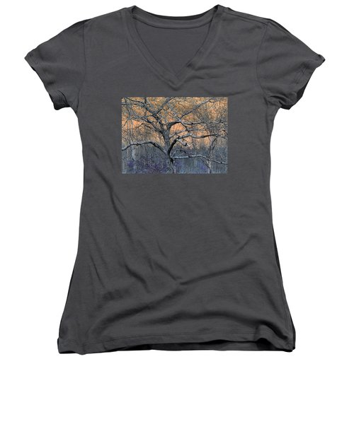 Bb's Tree 2 Women's V-Neck (Athletic Fit)