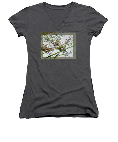 Beach Grass Women's V-Neck T-Shirt (Junior Cut) by Ginny Schmidt