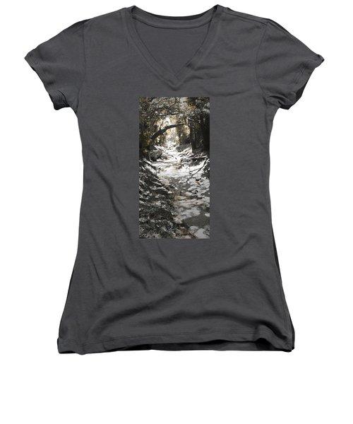 Beach Park Storm Drain Women's V-Neck T-Shirt (Junior Cut) by Steve Sperry