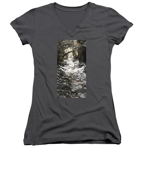 Beach Park Storm Drain Women's V-Neck T-Shirt