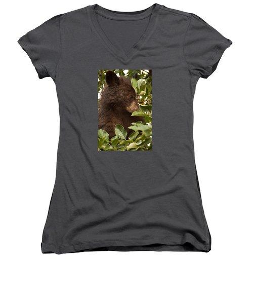 Bear Cub In Apple Tree3 Women's V-Neck T-Shirt (Junior Cut) by Loni Collins
