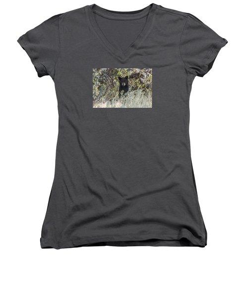 Bear Cub Looking For Mom Women's V-Neck T-Shirt (Junior Cut) by Stephen  Johnson